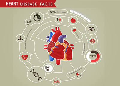 heart_infographic